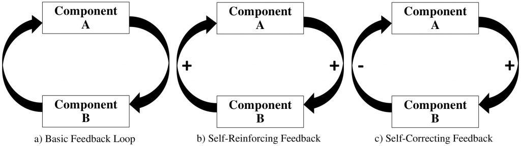 Figure 2.1: Describing Feedback Processes